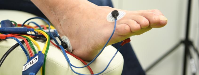 NC2 9409 845x321 - FREMS - badania prowadzone przez Klinikę Diabetologii Instytutu Medycyny Wsi w Lublinie
